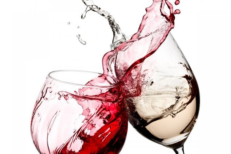 Populárno-náučná prednáška o pestovaní viniča hroznorodého a výrobe vína na Slovensku.